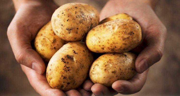 Cartofii pregatiti in acest mod pot provoca boli cardiovasculare. Ultima descoperire a cercetatorilor este alarmanta