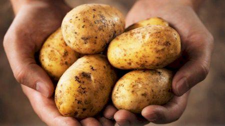 Cea mai delicioasă mâncare cu cartofi: Rețeta de post pe care nu te mai saturi să o pregătești