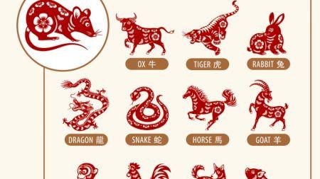 Horoscop chinezesc: Anul Șobolanului de Metal. Cum sunt afectate zodiile în 2020
