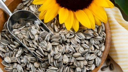 Nu mai consuma semințe prăjite! Cât de periculoase sunt? Poți avea mari probleme