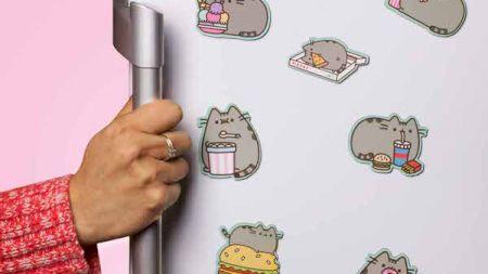 Pericolul de pe frigider! Obiectul banal care îţi poate pune viaţa în pericol