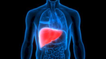 Știai că ficatul nu doare, dar poți fi bolnav? Simptomele care îți arată că ai probleme cu cel mai important organ digestiv