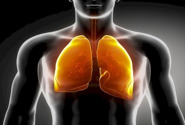 Remediul natural destinat fumătorilor: Îți curăță plămânii de nicotină și gudron. Vezi cât de simplu se prepară