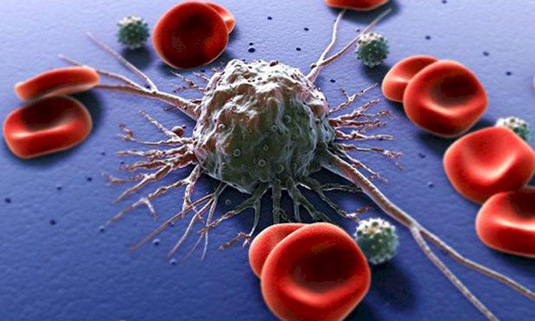 Super alimentul care oprește dezvoltarea tumorilor. Îl ai și tu în bucătărie și ar trebui să-l folosești mai des.Protejează-ți sănătatea