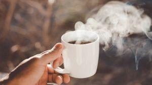 Ceaiul care poate declanșa cancer la colon. Mulți români continuă să-l bea fără să știe la ce se expun. Medicul Laura Ene avertizează