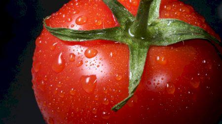 Consumul zilnic de roșii poate deveni un pericol. Ce afecțiuni poate genera și cum îți dai seama când trebuie să te oprești