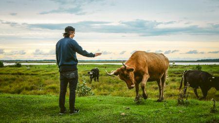 Șocant de-a dreptul! Un actor celebru a început să bea urină de vacă zilnic și ceai din excremente. Bolile pe care susține că le tratează