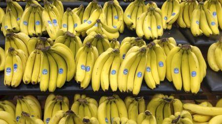 Nu mai arunca coaja de banană! Are proprietăți uluitoare, despre care foarte puțini știu. Iată cum poate fi folosită