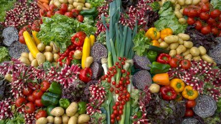 Super alimentul din Biblie care ne prelungește viața. Românii nu îl folosesc, deși e ieftin și se găsește ușor. Iată ce beneficii uluitoare are
