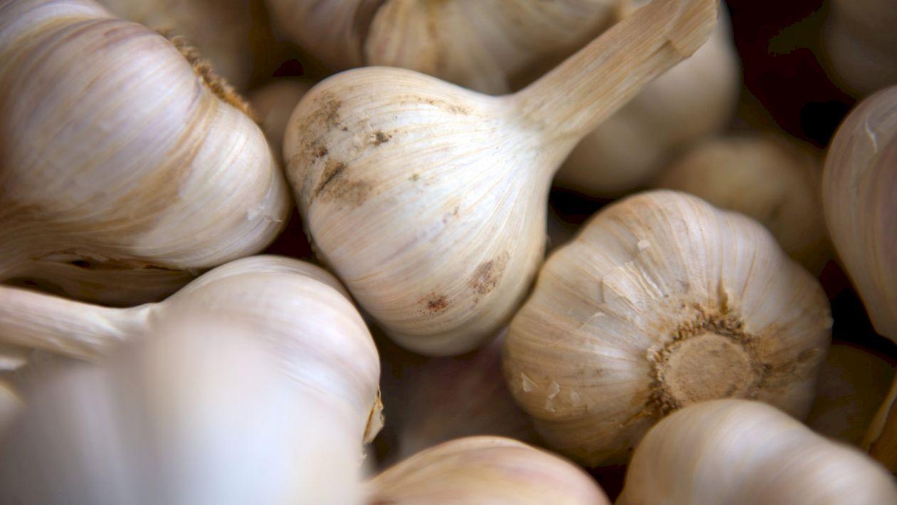 Nu mai cumpărați acest tip de usturoi din magazine! Este toxic! Provine din China și este albit cu clor! Cum îl recunoașteți