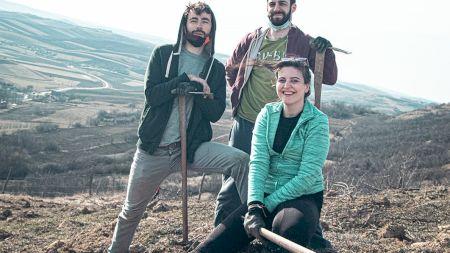 Doriți să faceți o faptă bună și să contribuiți la reînverzirea României? Echipa Muma Pădurii are soluția
